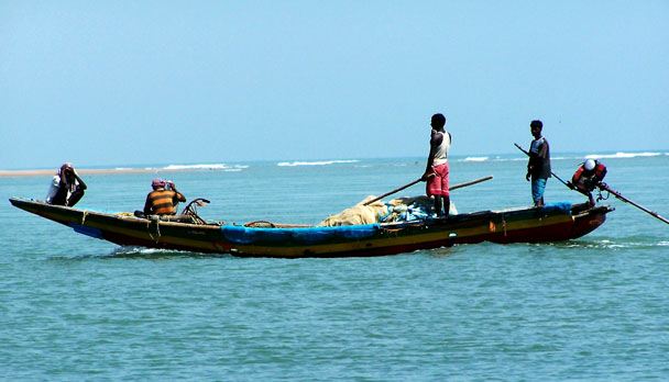 Chilika Lake Cruise
