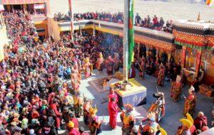 Hemis Festival Popularity